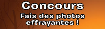 concoursPhotos338x91