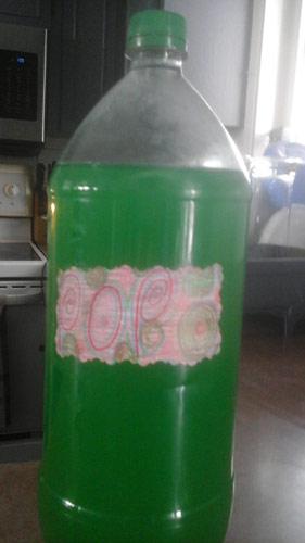 soda500