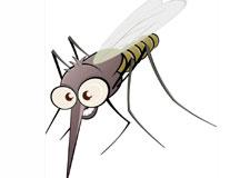 Un journal chasse-moustiques