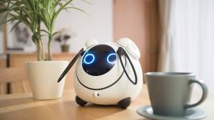 OHaNAS, un robot bavard !