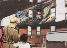 Une murale sur les oiseaux en danger