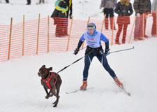 Faire du sport avec son chien!