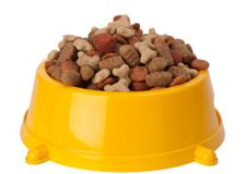 Recettes de croquettes pour chien