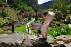 Des chaussons de ballet voyageurs