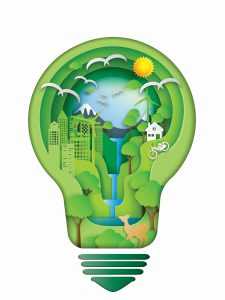 Environnement : démêle le vrai du faux
