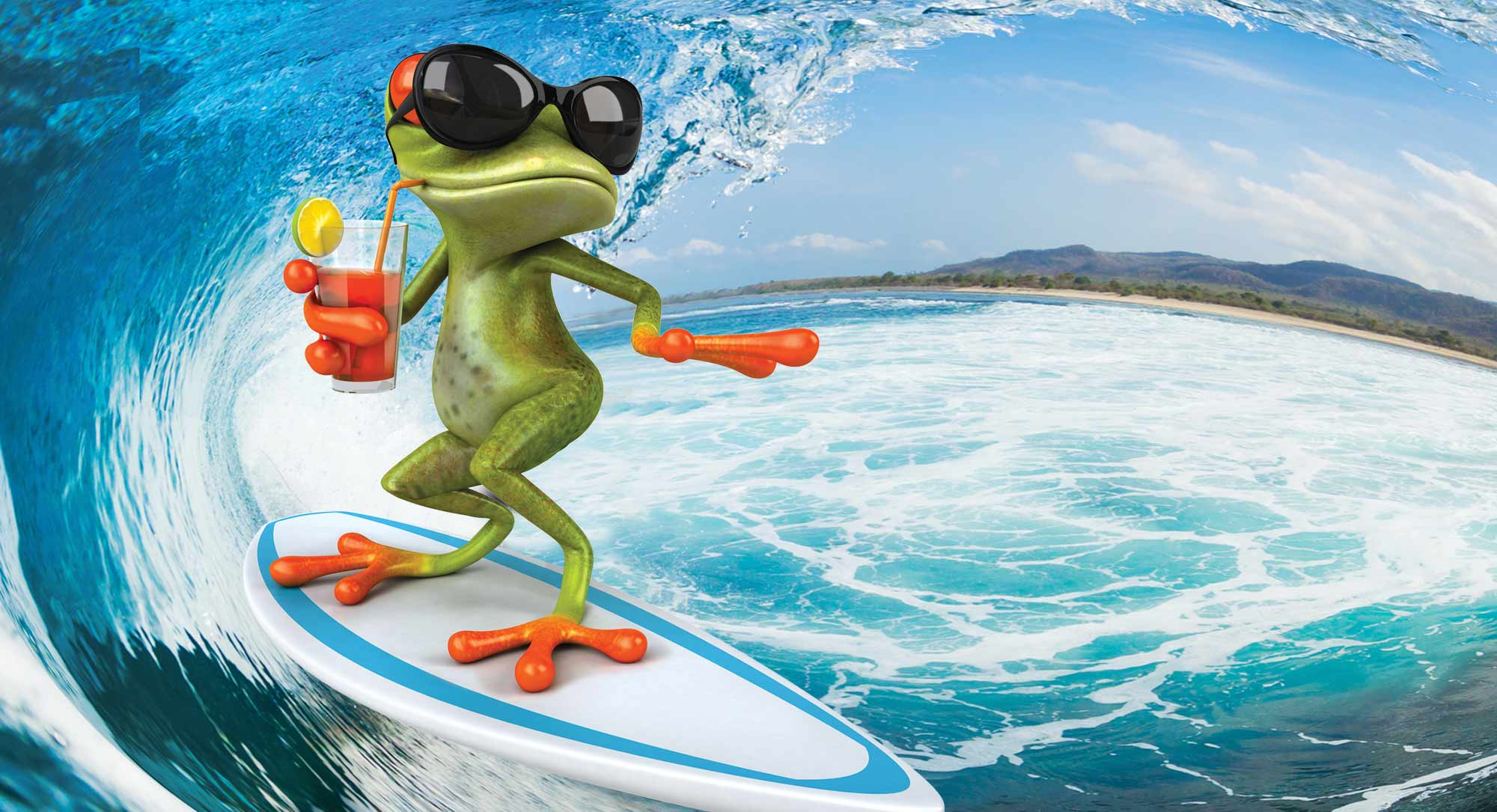 Top 5 des grenouilles les plus bizarroïdes