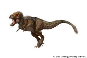 T. rex, le redoutable prédateur !