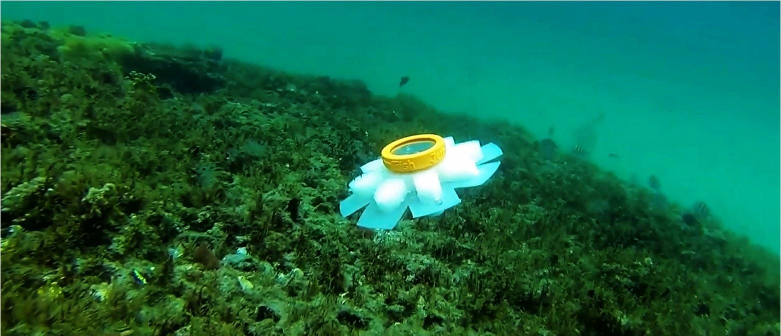 Des robots-méduses