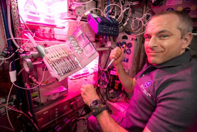 David Saint-Jacques dans la Station spatiale internationale, en train d'utiliser le bioanalyseur.