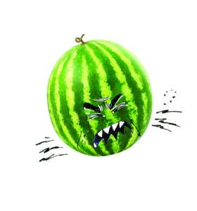 Comment faire exploser un melon d'eau
