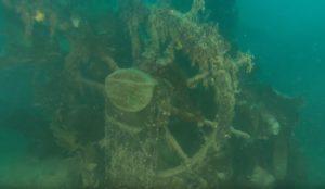Des images inédites de l'épave du HMS Terror