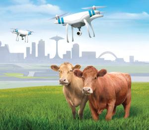 La ferme du futur, ça ressemble à quoi ?