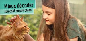 Sais-tu parler à un chat ?