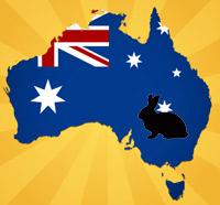 L'invasion des lapins en Australie