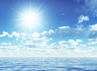 Protégeons nos océans!
